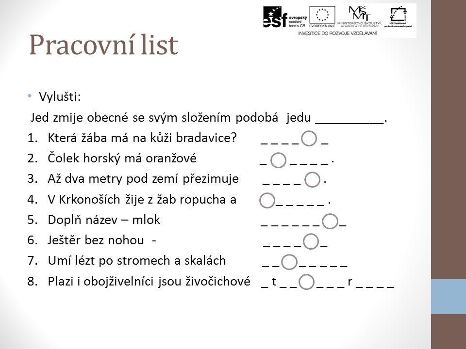 Pracovní list Vylušti: