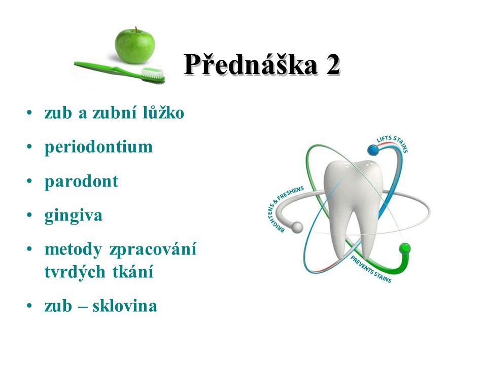 Přednáška 2 zub a zubní lůžko periodontium parodont gingiva