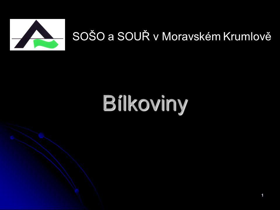 SOŠO a SOUŘ v Moravském Krumlově