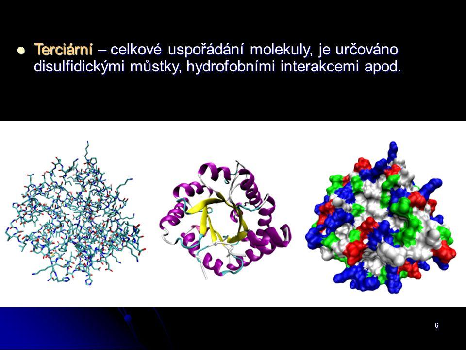 Terciární – celkové uspořádání molekuly, je určováno disulfidickými můstky, hydrofobními interakcemi apod.