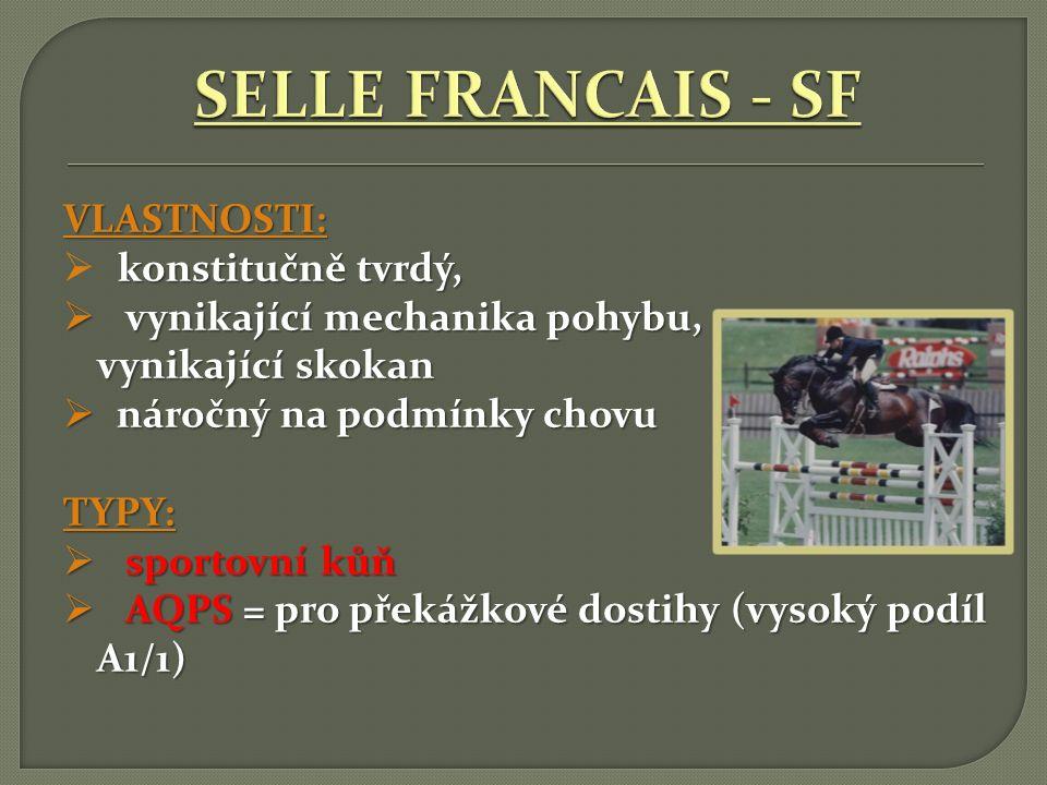 SELLE FRANCAIS - SF VLASTNOSTI: konstitučně tvrdý,