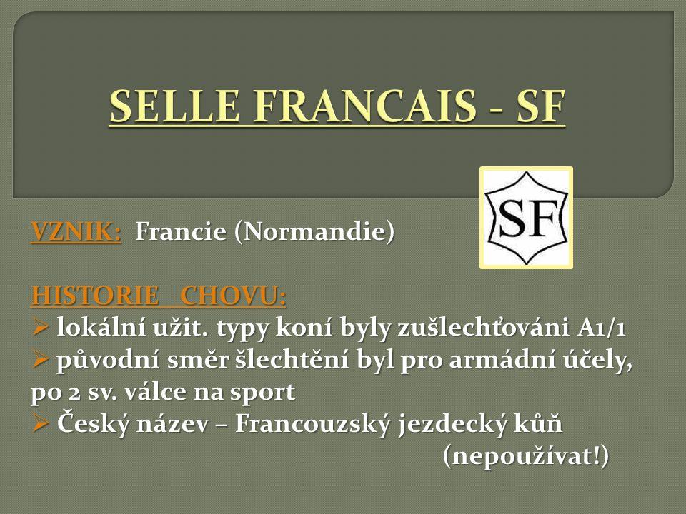 SELLE FRANCAIS - SF VZNIK: Francie (Normandie) HISTORIE CHOVU: