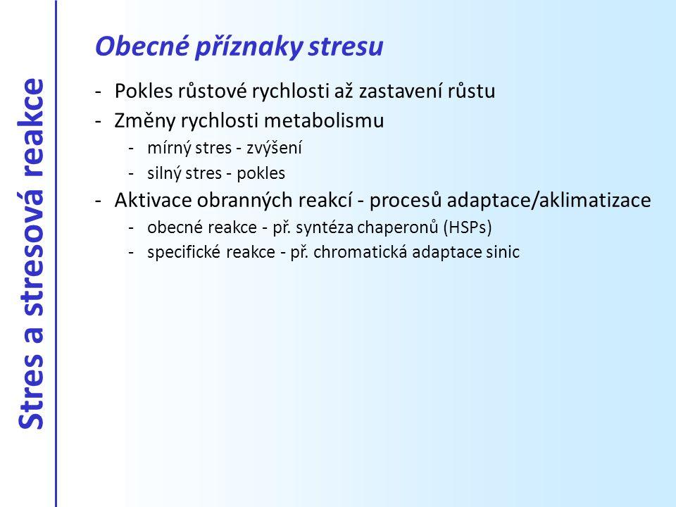 Obecné příznaky stresu