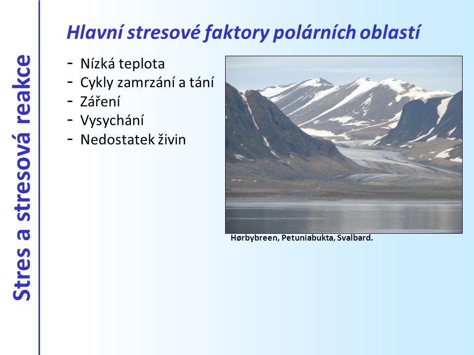 Hlavní stresové faktory polárních oblastí
