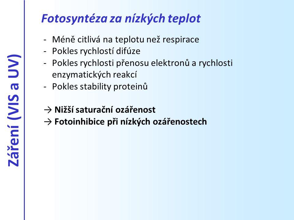 Fotosyntéza za nízkých teplot