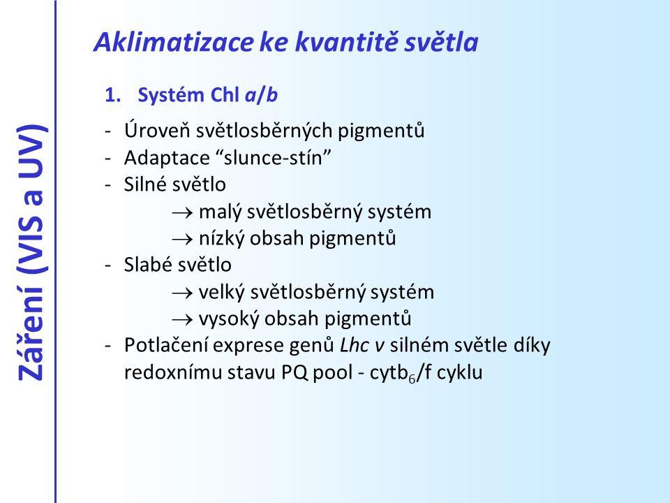 Záření (VIS a UV) Aklimatizace ke kvantitě světla Systém Chl a/b