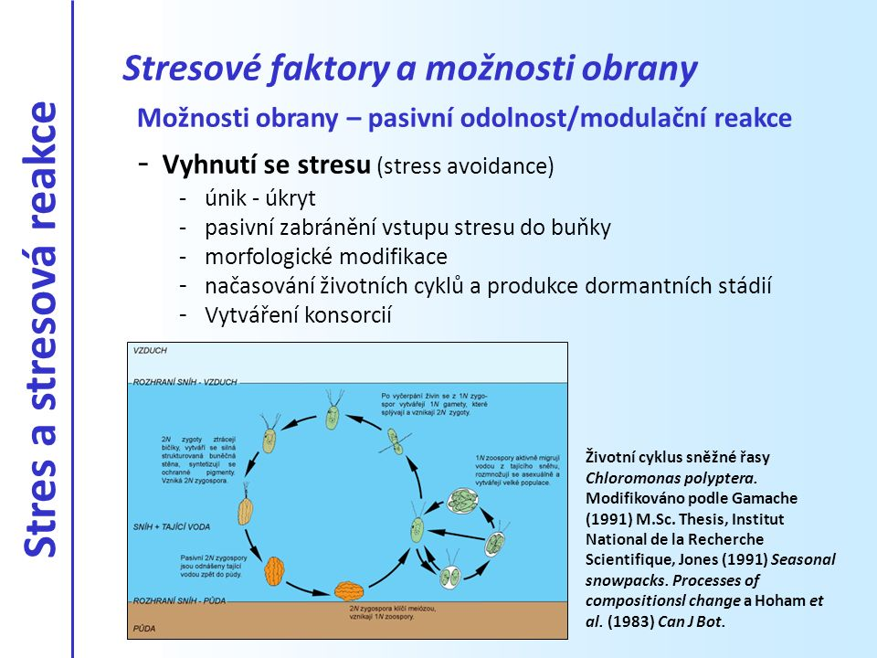 Stresové faktory a možnosti obrany