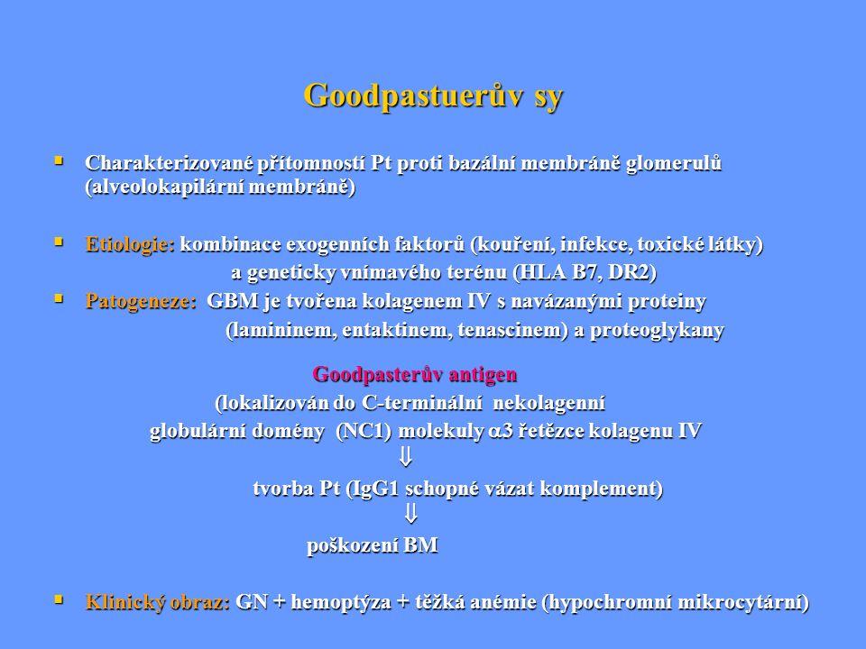 Goodpastuerův sy Charakterizované přítomností Pt proti bazální membráně glomerulů (alveolokapilární membráně)