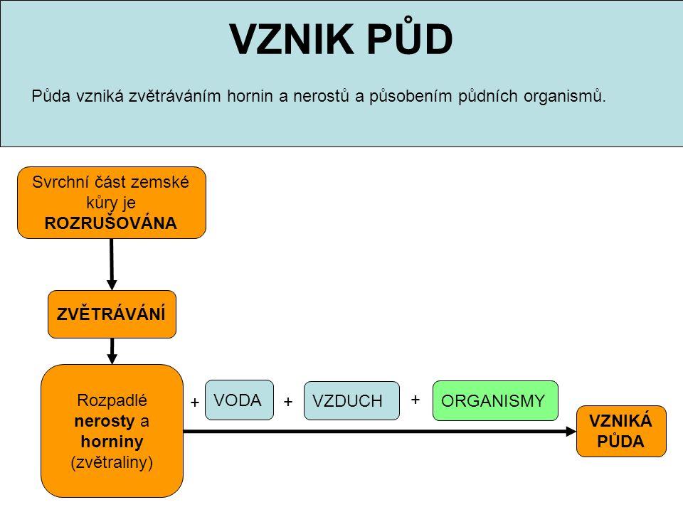 VZNIK PŮD Půda vzniká zvětráváním hornin a nerostů a působením půdních organismů. Svrchní část zemské kůry je.