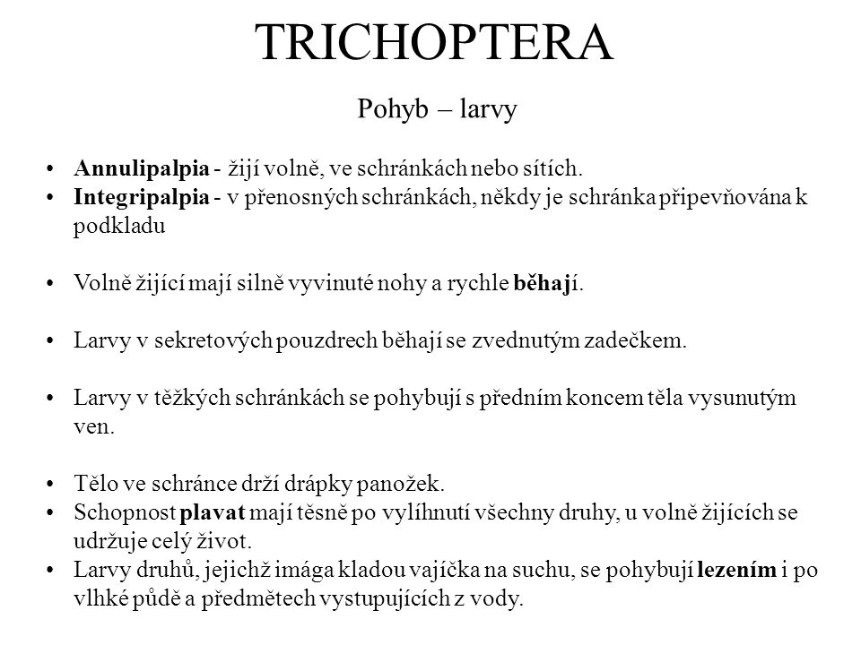 TRICHOPTERA Pohyb – larvy
