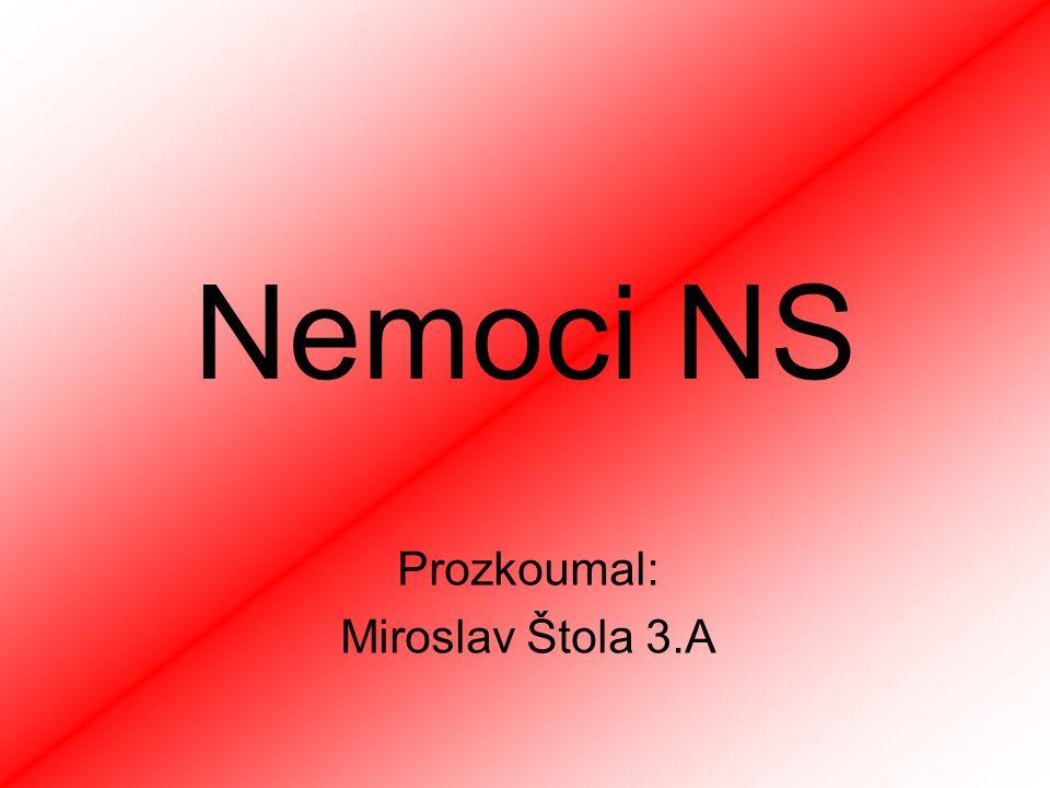 Prozkoumal: Miroslav Štola 3.A