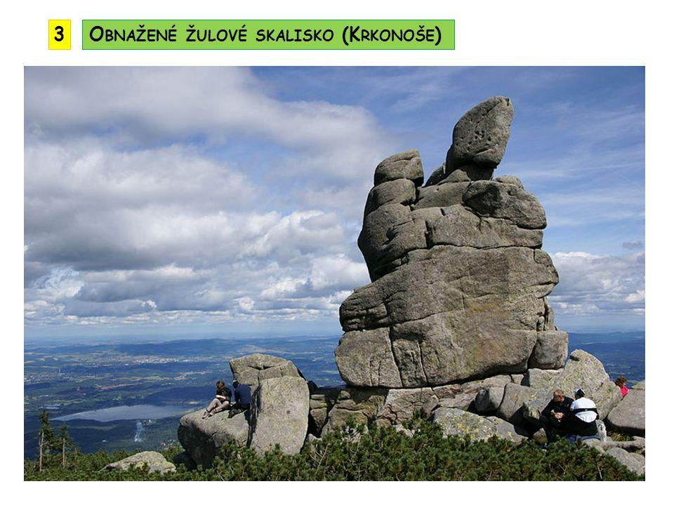 3 Obnažené žulové skalisko (Krkonoše)