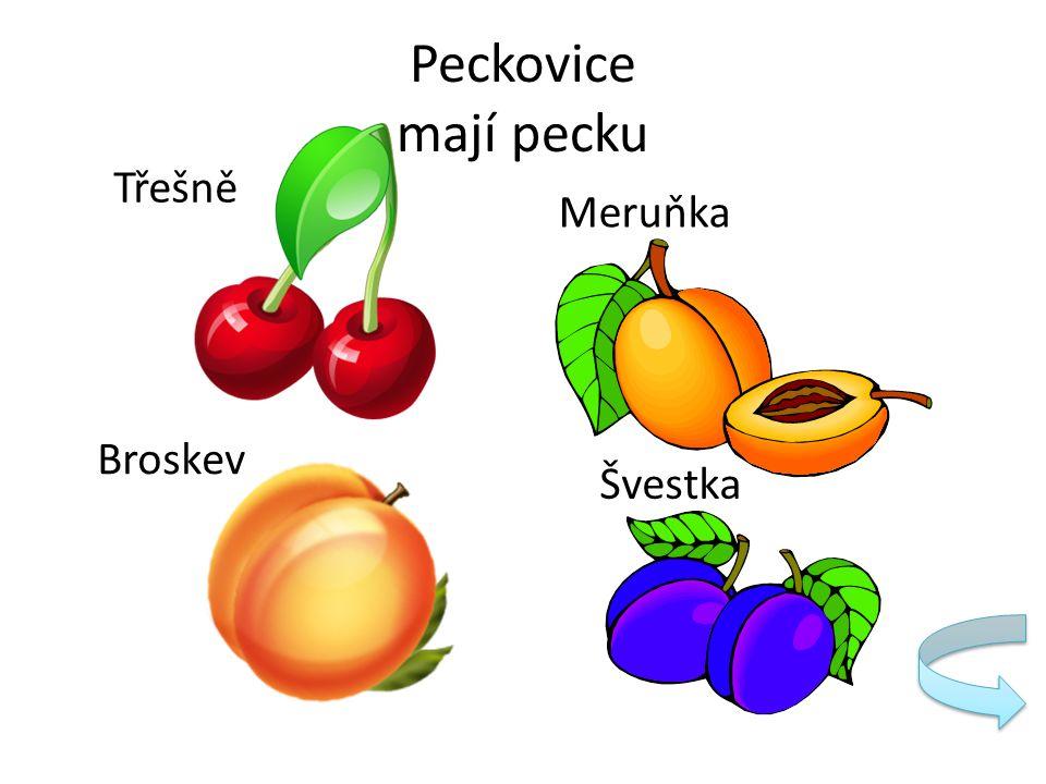 Peckovice mají pecku Třešně Meruňka Broskev Švestka