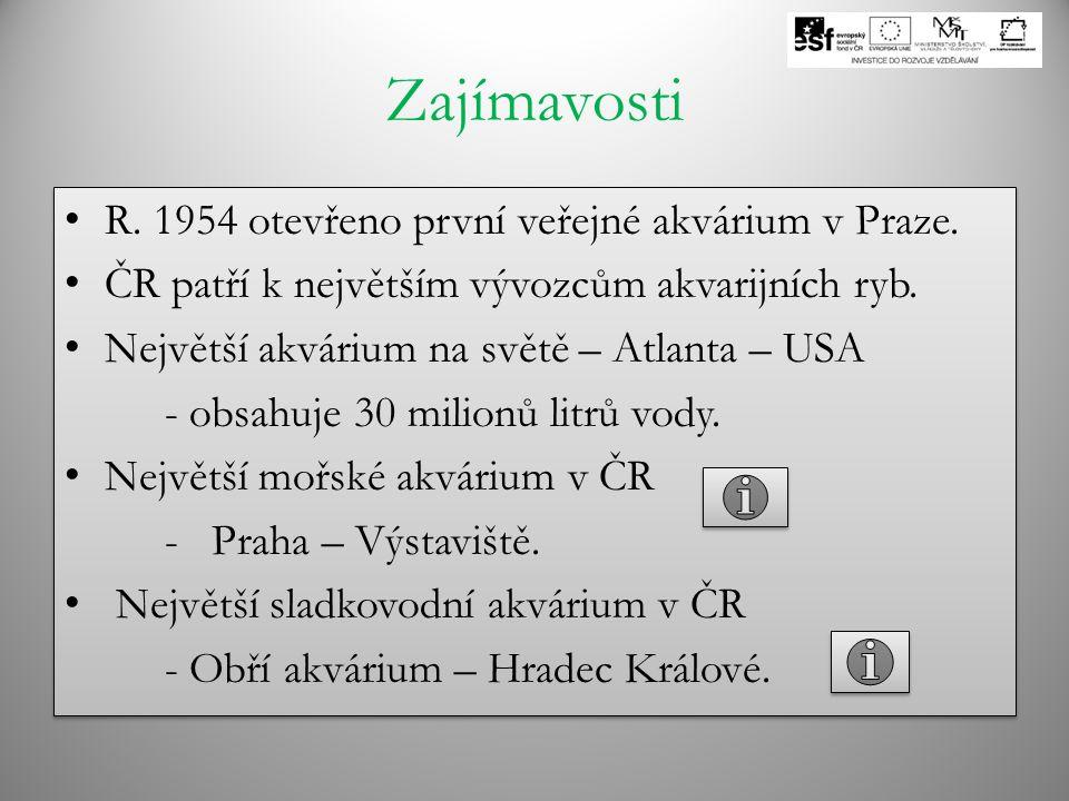 Zajímavosti R. 1954 otevřeno první veřejné akvárium v Praze.