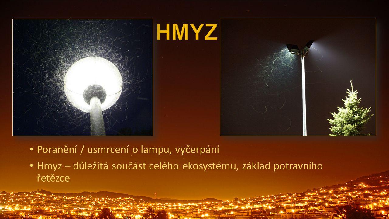 HMYZ Poranění / usmrcení o lampu, vyčerpání