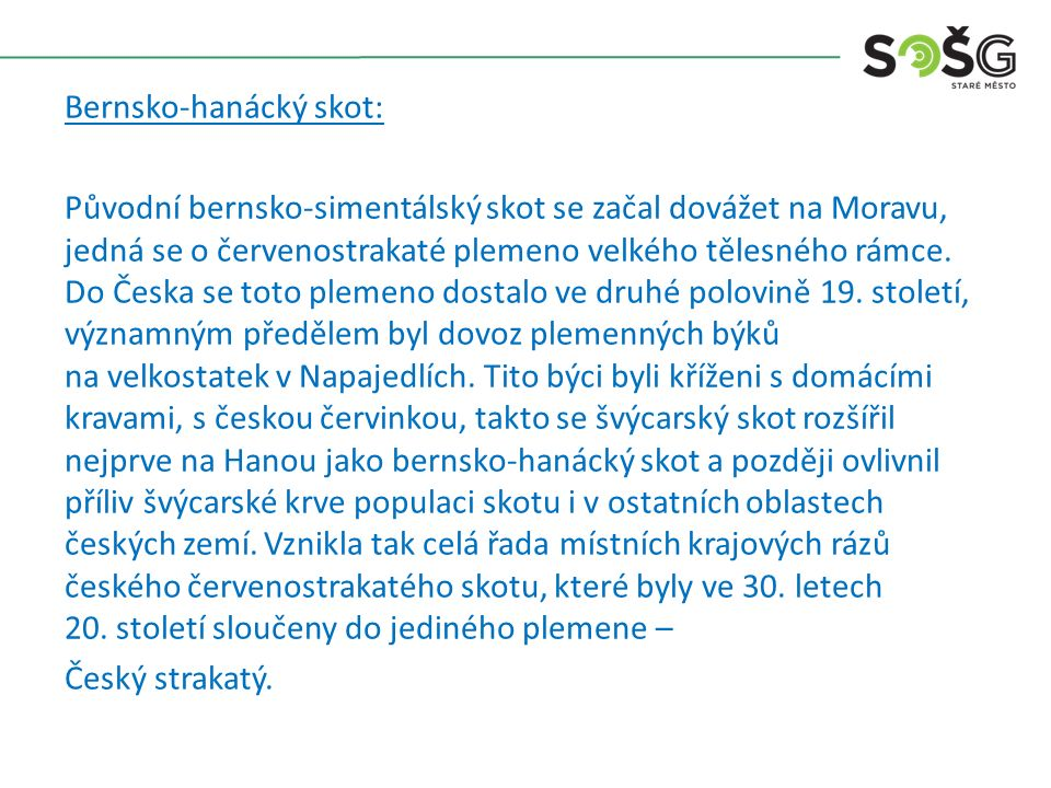 Bernsko-hanácký skot: Původní bernsko-simentálský skot se začal dovážet na Moravu, jedná se o červenostrakaté plemeno velkého tělesného rámce.