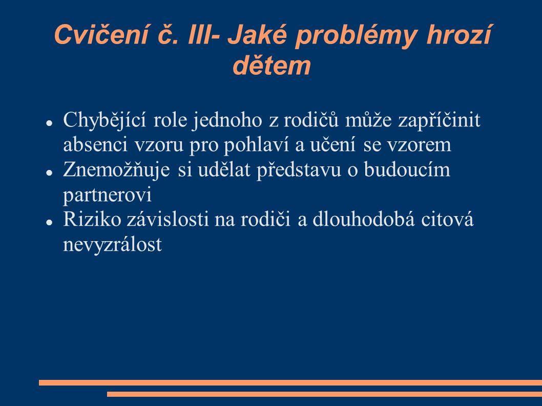 Cvičení č. III- Jaké problémy hrozí dětem
