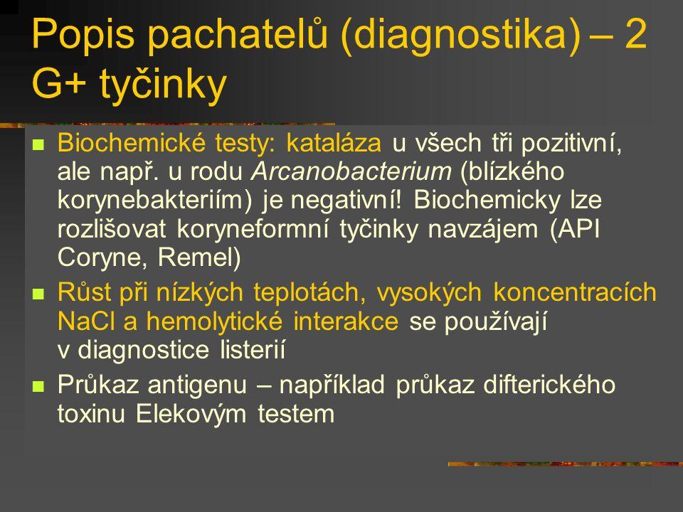 Popis pachatelů (diagnostika) – 2 G+ tyčinky