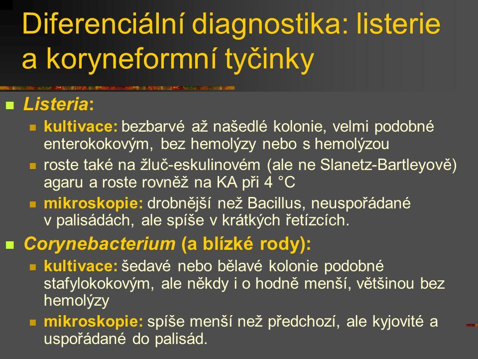 Diferenciální diagnostika: listerie a koryneformní tyčinky