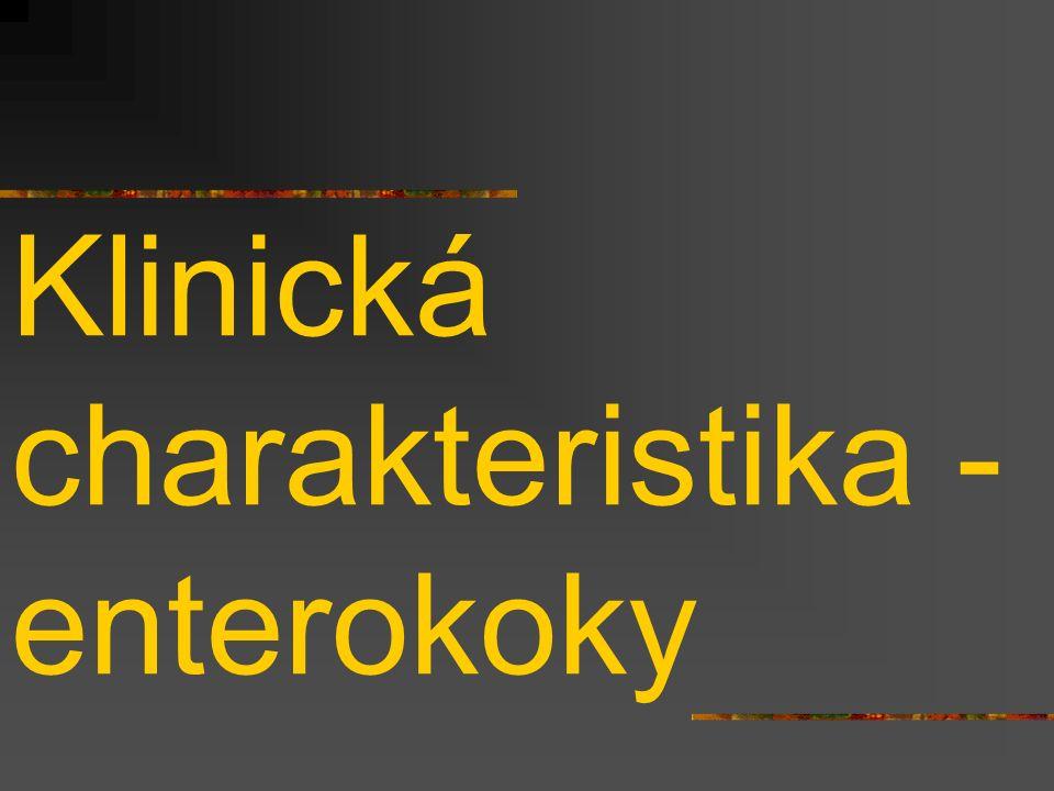Klinická charakteristika - enterokoky