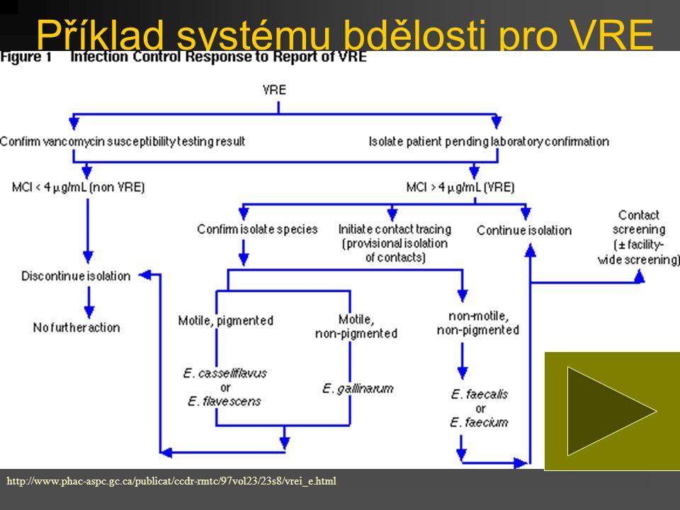 Příklad systému bdělosti pro VRE