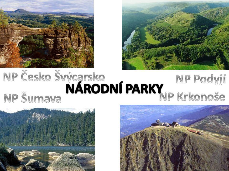 NP Česko Švýcarsko NP Podyjí NÁRODNÍ PARKY NP Krkonoše NP Šumava