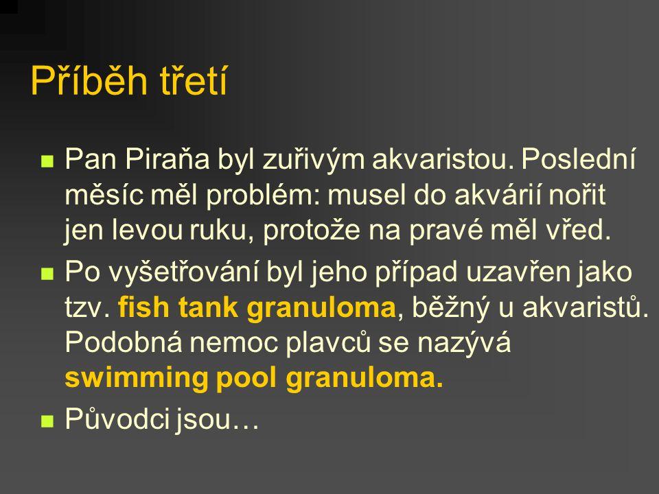 Příběh třetí Pan Piraňa byl zuřivým akvaristou. Poslední měsíc měl problém: musel do akvárií nořit jen levou ruku, protože na pravé měl vřed.