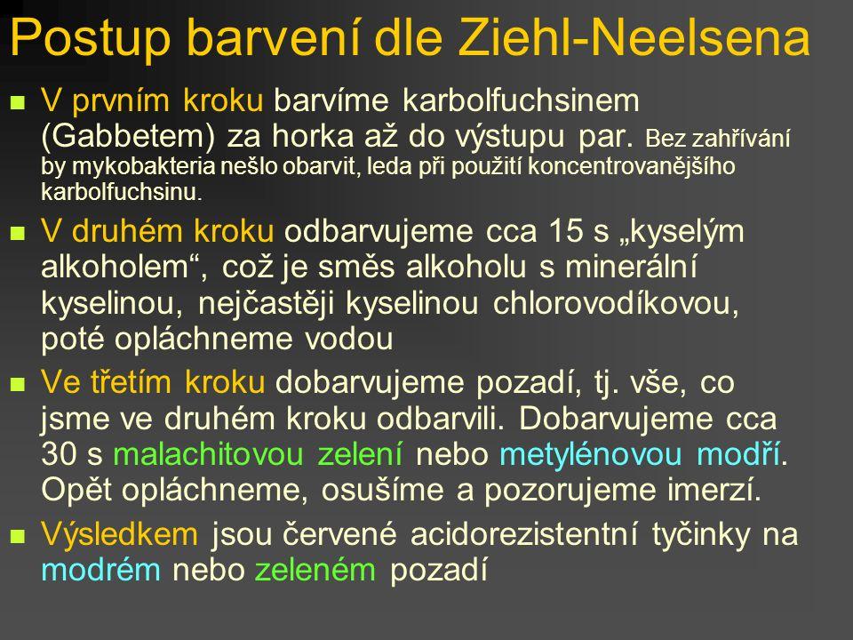 Postup barvení dle Ziehl-Neelsena
