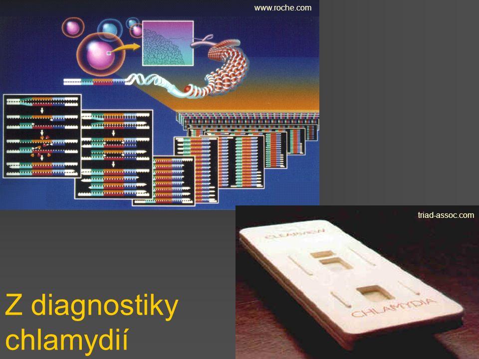 Z diagnostiky chlamydií