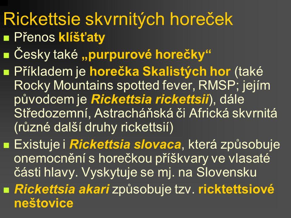 Rickettsie skvrnitých horeček