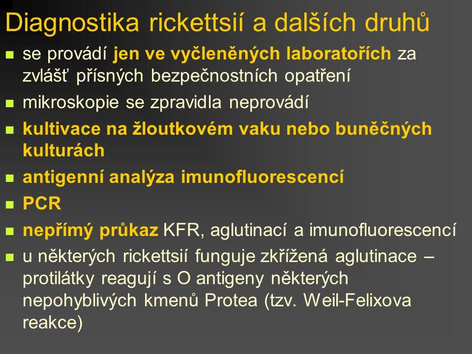 Diagnostika rickettsií a dalších druhů