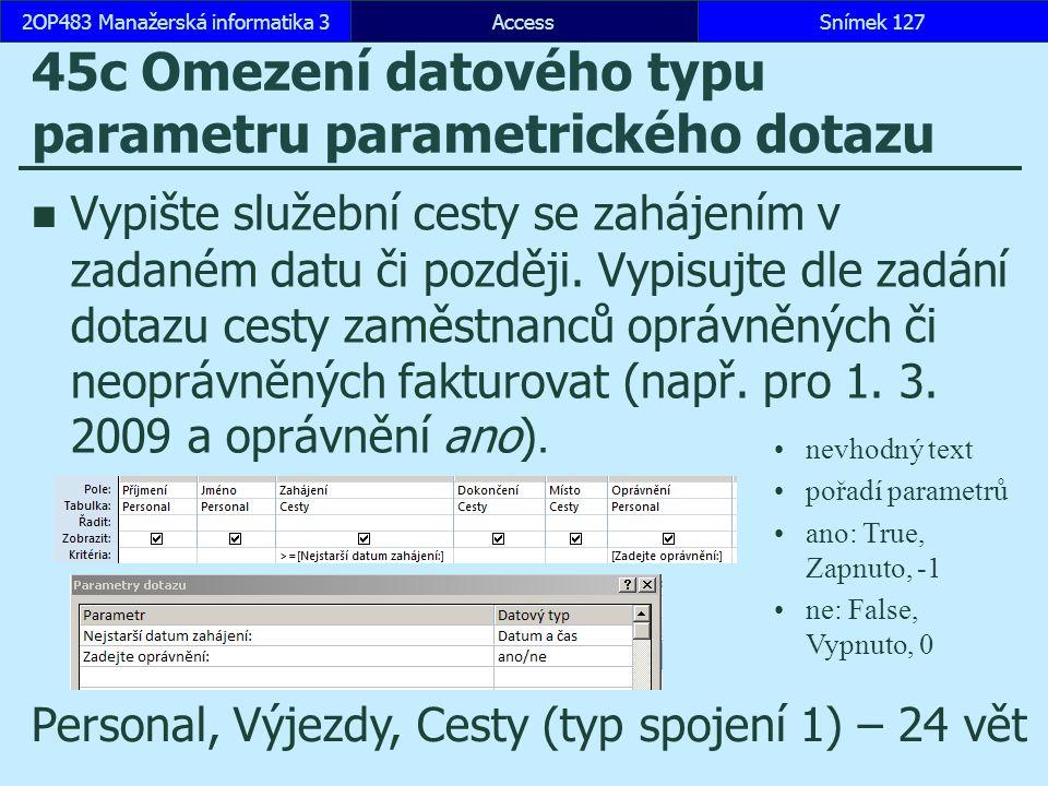 45c Omezení datového typu parametru parametrického dotazu