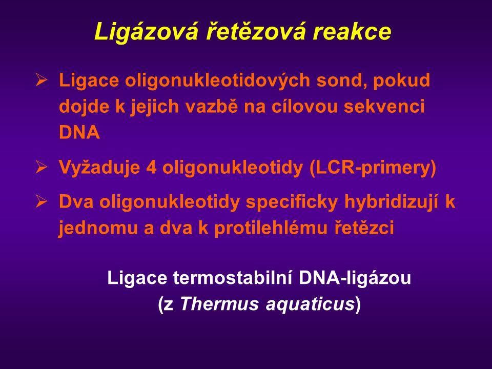 Ligázová řetězová reakce