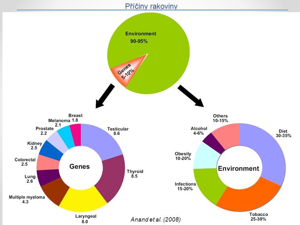 Příčiny rakoviny 27 Anand et al. (2008) 27
