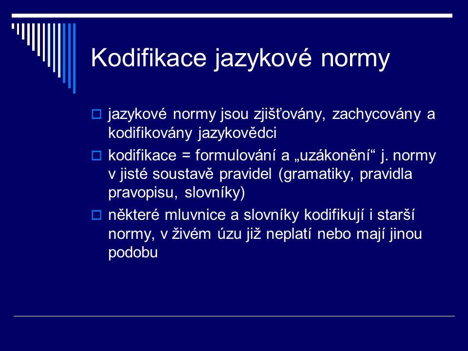 Kodifikace jazykové normy