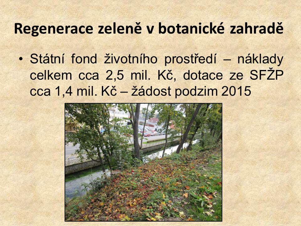 Regenerace zeleně v botanické zahradě