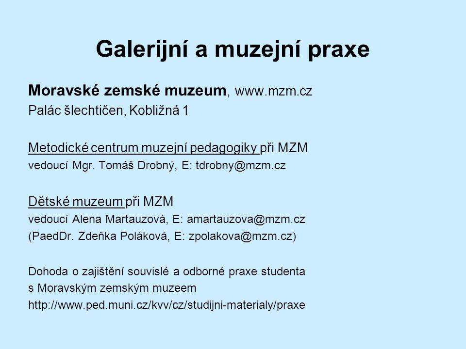 Galerijní a muzejní praxe