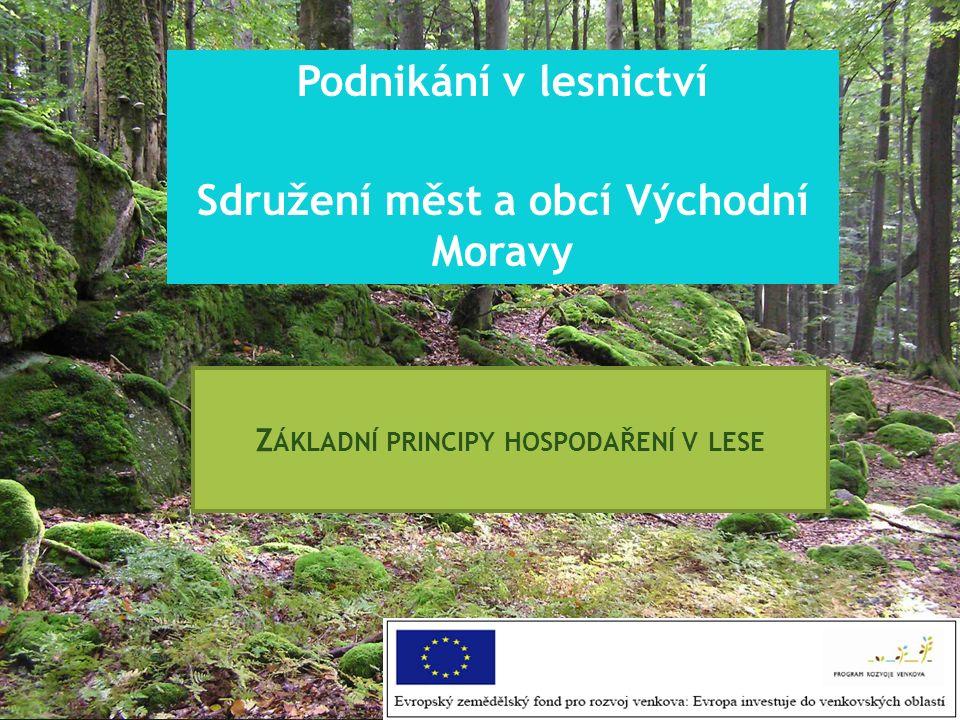Podnikání v lesnictví Sdružení měst a obcí Východní Moravy