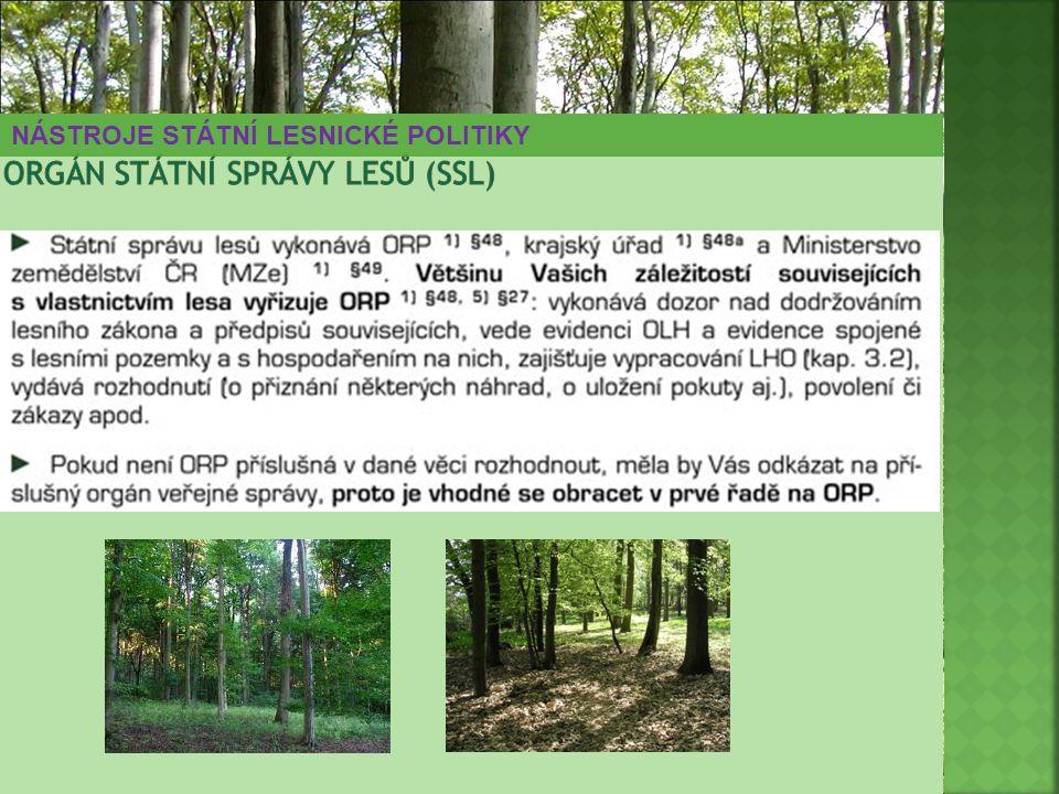 orgán státní správy lesů (SSL)