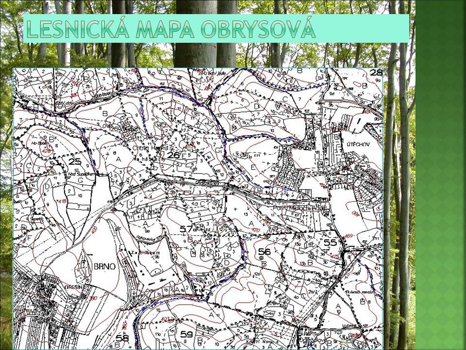 Lesnická mapa obrysová