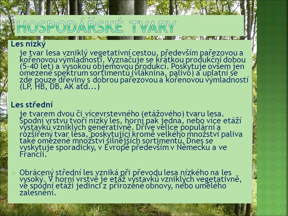 Hospodářské tvary Les nízký