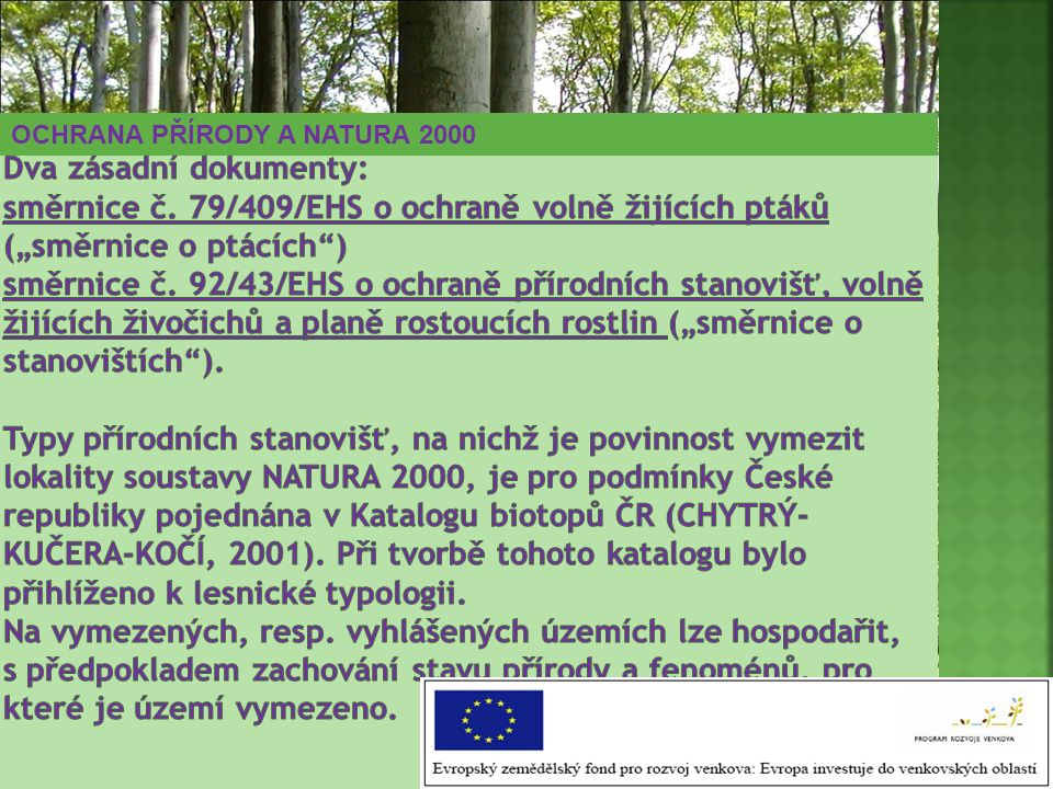 Dva zásadní dokumenty: směrnice č