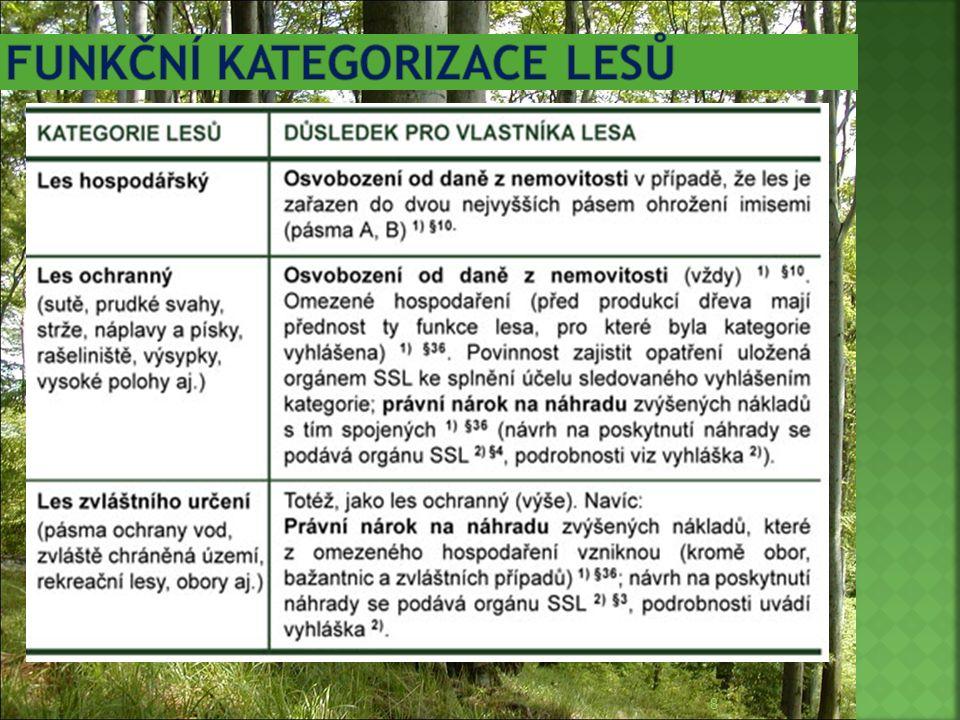 Funkční kategorizace lesů