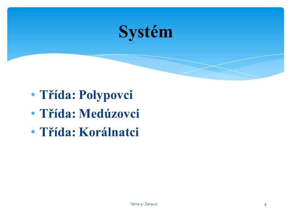 Systém Třída: Polypovci Třída: Medúzovci Třída: Korálnatci
