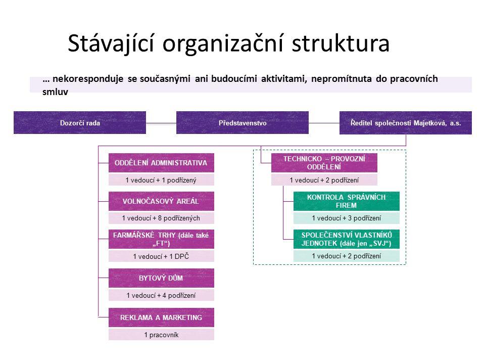 Stávající organizační struktura