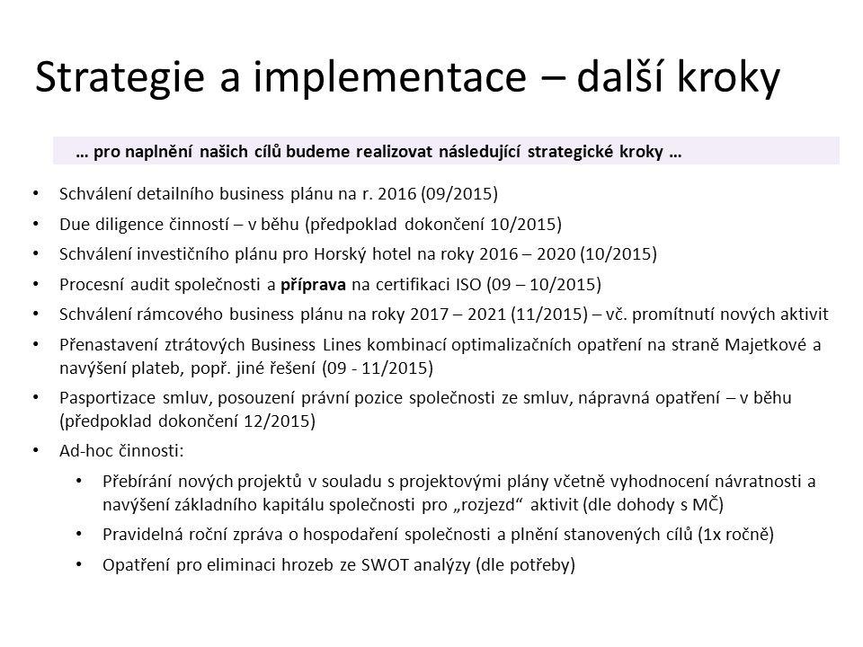 Strategie a implementace – další kroky