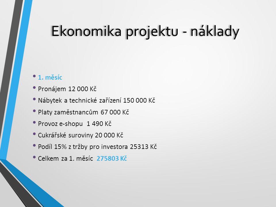 Ekonomika projektu - náklady