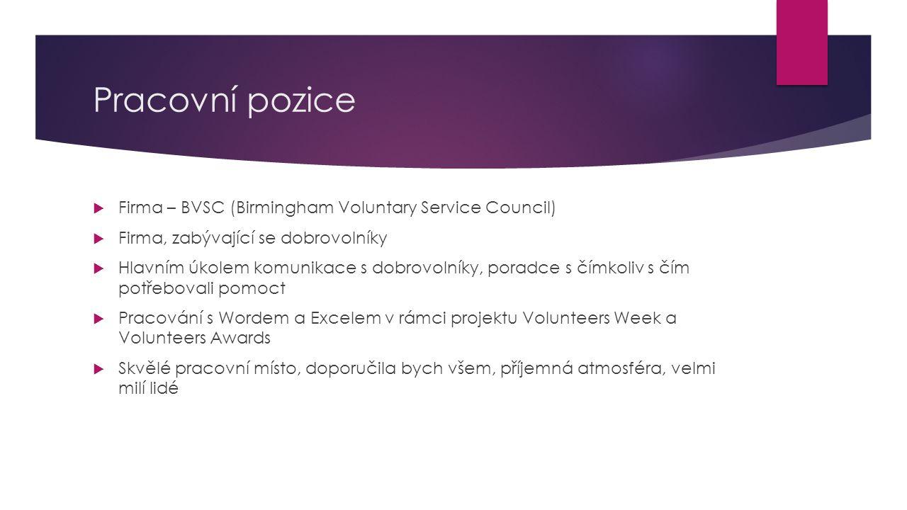 Pracovní pozice Firma – BVSC (Birmingham Voluntary Service Council)