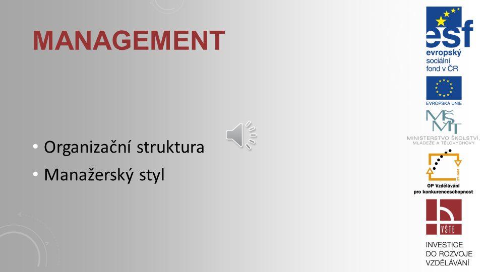Management Organizační struktura Manažerský styl