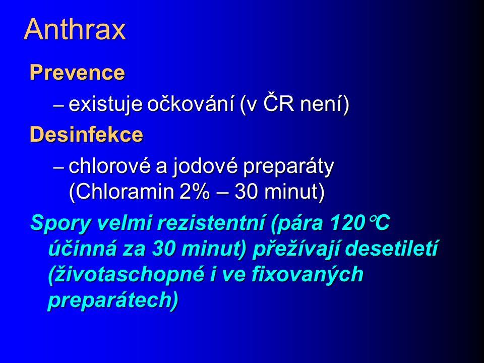 Anthrax Prevence existuje očkování (v ČR není) Desinfekce